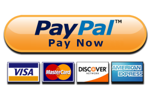 pay-pal-paynow-wellington-runners-guide-button